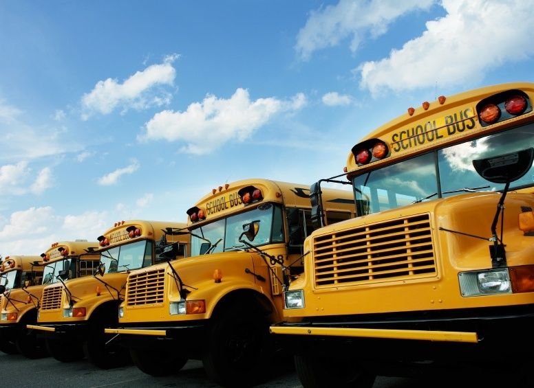 education-school-buses